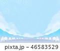 背景素材 野外イベント 冬 46583529