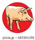 ぶた ブタ 豚のイラスト 46584198