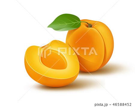 Fresh apricot with leaf illustration 46588452