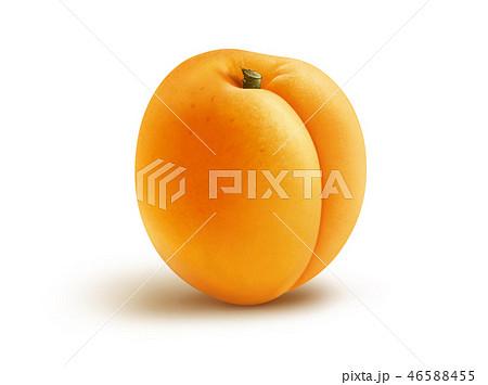 Fresh apricot illustration, digital painting 46588455