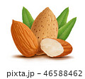 Almonds with leaves isolated on white background 46588462