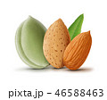Almonds with leaf isolated on white background 46588463
