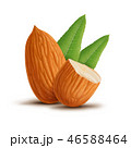 Almonds with leaves isolated on white background 46588464