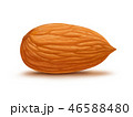 Almond isolated on white background 46588480