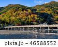 嵐山 紅葉 渡月橋の写真 46588552
