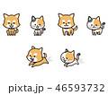 ペットの犬と猫 46593732
