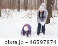 ウィンター ウインター 冬の写真 46597874