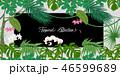 ベクター カード 葉書のイラスト 46599689