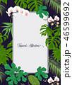 ベクター フレーム エキゾチックのイラスト 46599692