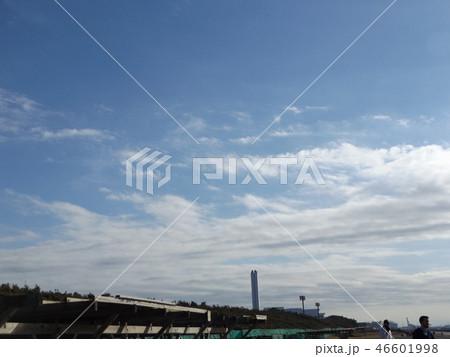 稲毛海岸の青空と白い雲 46601998
