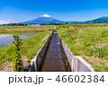 水田 稲 畑の写真 46602384