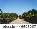 竹富島島内風景 46606067