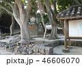 竹富島島内風景 46606070