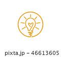 明かり 電球 球根のイラスト 46613605