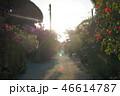 竹富島島内風景 46614787