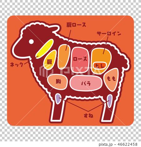 食物図解/羊肉の部位 46622458