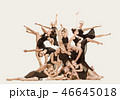 ダンサー ダンス 舞うの写真 46645018