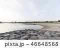 川 大森ふるさとの浜辺公園 海の写真 46648568