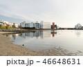 川 大森ふるさとの浜辺公園 海の写真 46648631