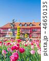 ふなばしアンデルセン公園 チューリップ 花の写真 46650135