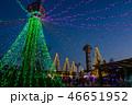 冬 公園 日本の写真 46651952
