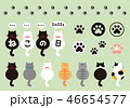 猫 動物 かわいいのイラスト 46654577