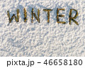 word winter composed of fir branches in the snow 46658180