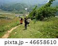 アジア 水田 稲の写真 46658610