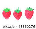 赤いイチゴ3個 水彩画 46660276