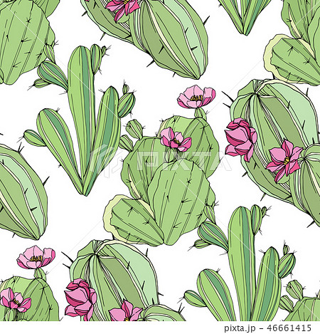 Vector Cacti botanical flower. Green engraved ink art. Seamless background pattern. Fabric wallpaper 46661415