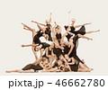 バレエ ダンサー ダンスの写真 46662780