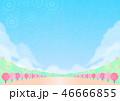 春 桜 桜並木のイラスト 46666855