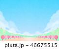 春 桜 桜並木のイラスト 46675515
