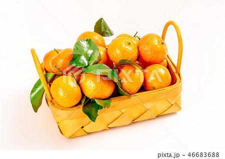 オレンジ色 オレンジ 橙 46683688