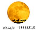 月とラクダの隊列 46688515