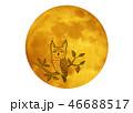 月とコノハズク 46688517