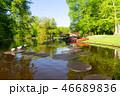 公園 春 泉の写真 46689836