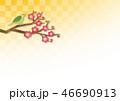 梅 うぐいす 紅梅のイラスト 46690913