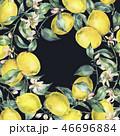 水彩画 背景 フラワーのイラスト 46696884