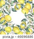 水彩画 フラワー 花のイラスト 46696886
