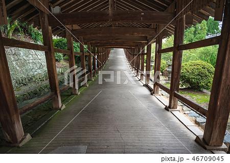 吉備津神社 廻廊の風景 46709045