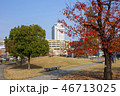 いこいの道の紅葉と大分駅 46713025