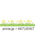 たんぽぽ 46718367