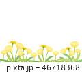 たんぽぽ 46718368