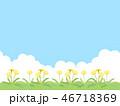 たんぽぽ 46718369