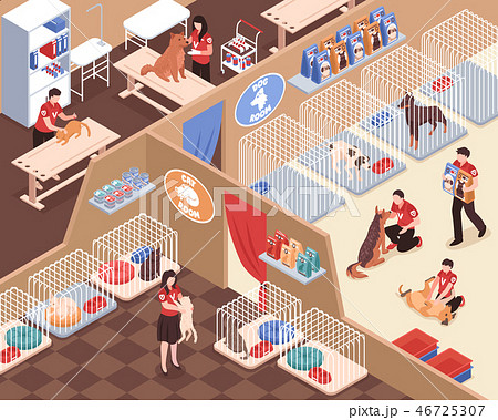 Animal Shelter Isometric Illustration 46725307