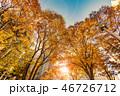 新宿 紅葉 ビルの写真 46726712