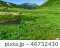 笠ヶ岳 高原 北アルプスの写真 46732430