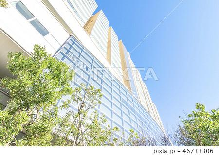 病院イメージ(国立国際医療研究センター) 46733306