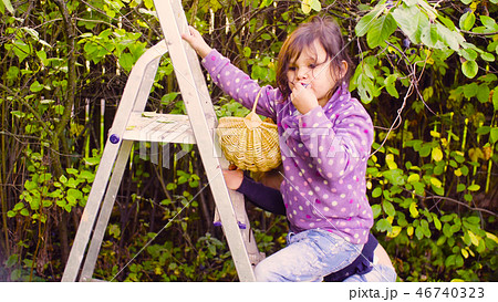 Little girl climbing up and a ladder 46740323